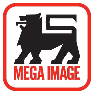 mega-image-s.r.l.